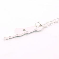 Silver Tone Israel Necklace
